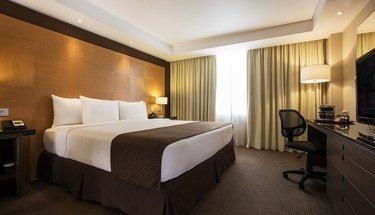 Simple standard room Urban Aeropuerto Ciudad de México Hotel Mexico City